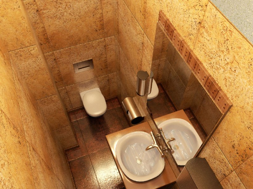 Туалет комнаты дизайн